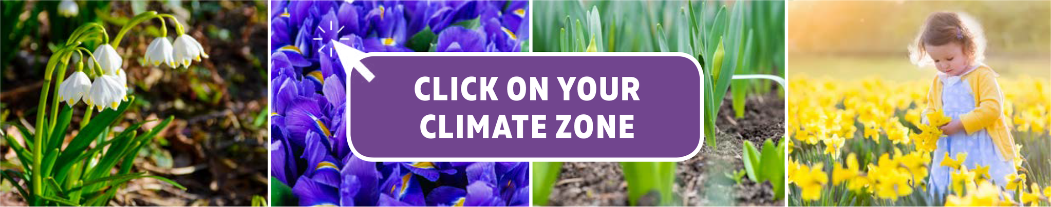Click on your Climate Zone to see the Top 10 List for your area.