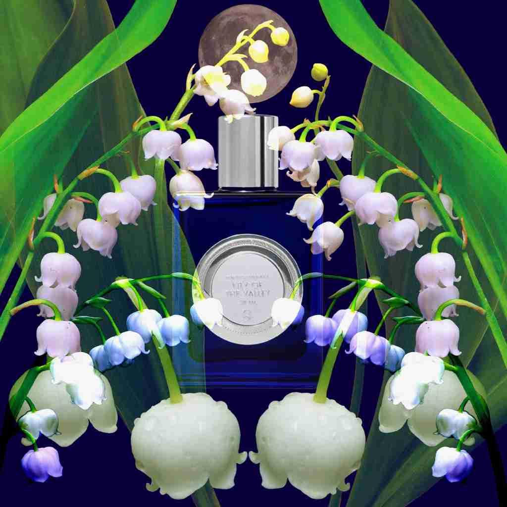 Poppy Soma Parfum