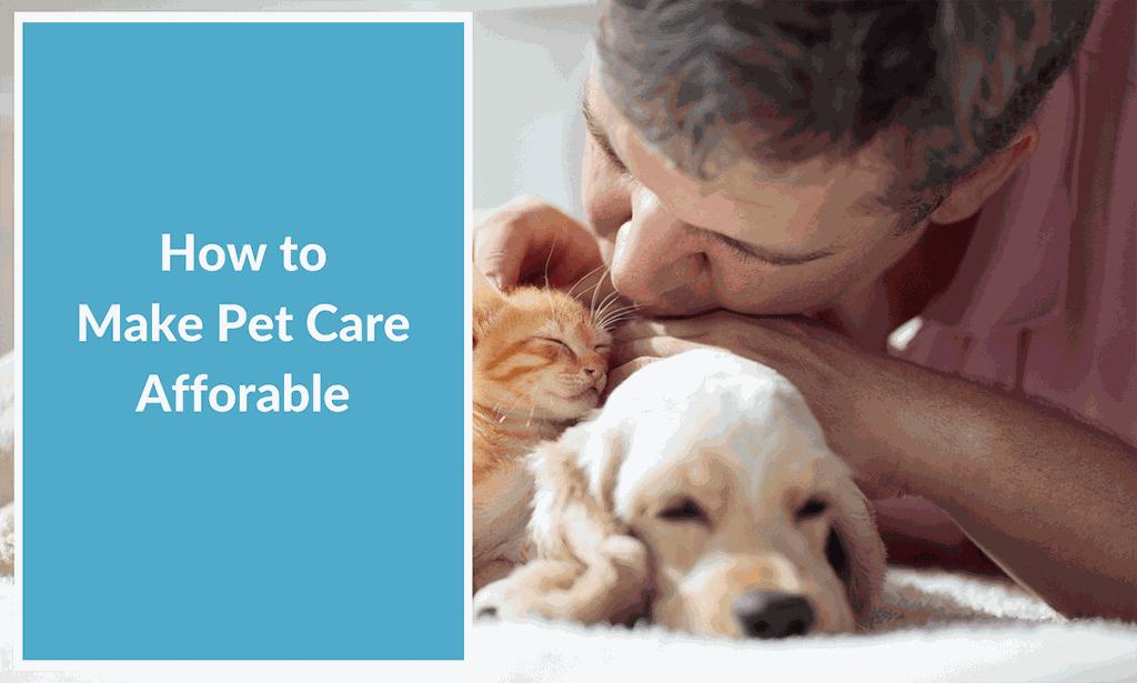pet care vet medicine dog cat