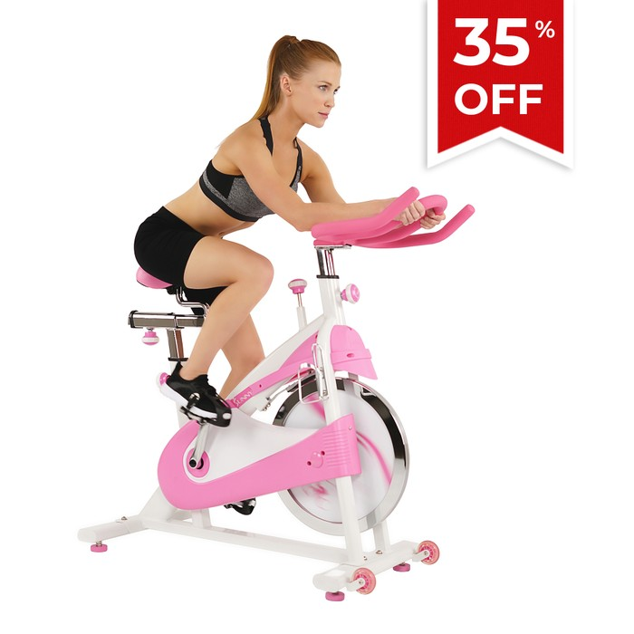 sunny health fitness spin bike