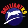 brilliantk9.com