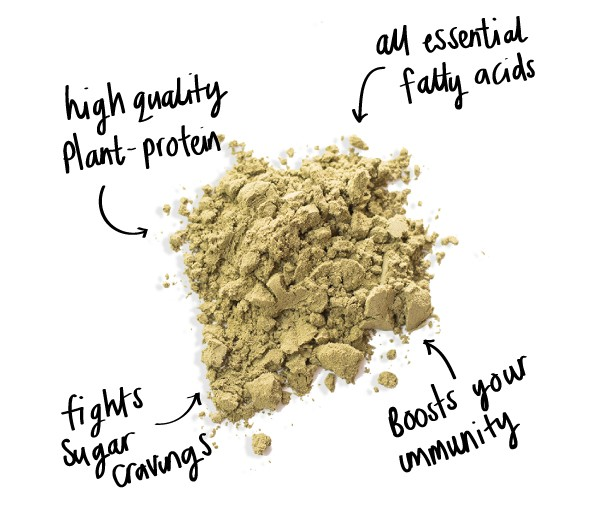 hemp protein powder benefits