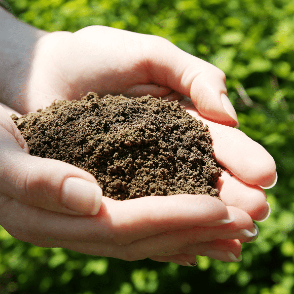 Increase your microbial populations