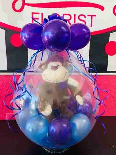 A brown monkey inside a large blue balloon filled with blue and purple balloons