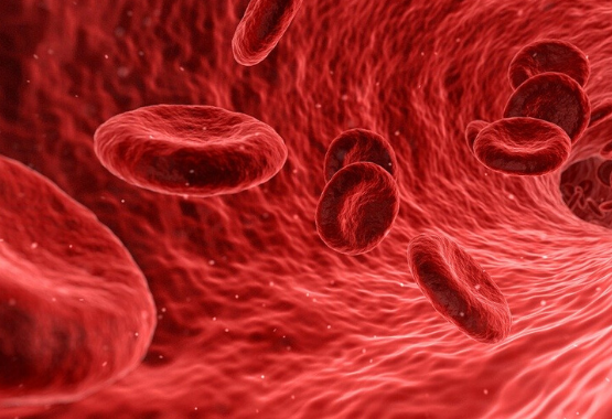 3.Anemia Prevention