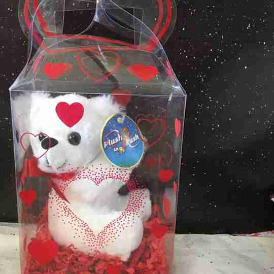 A teddy bear inside a box, made for Valentine's Day.