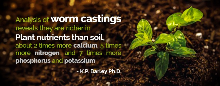 KP Barley quote about soil analysis