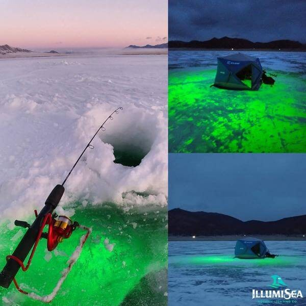 ice fishing lights