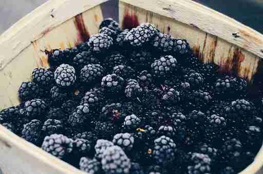 blackberries frozen fruit