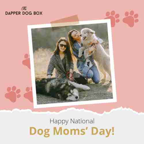 women with dogs, Happy National Dog moms' Day!