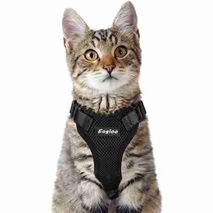 Eagloo Cat Harness
