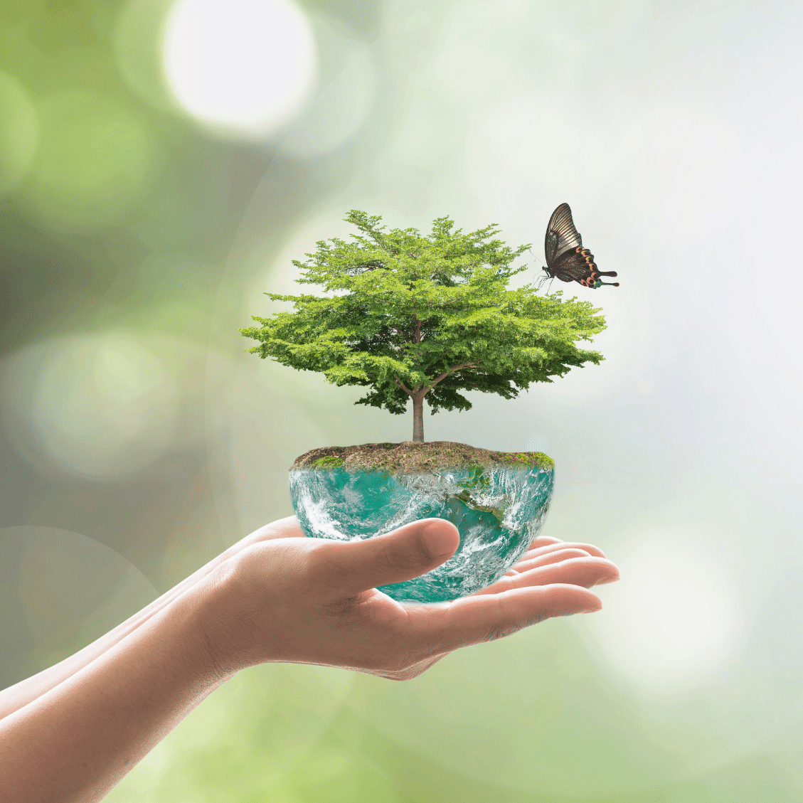 Teraganix environmentally-friendly Organko