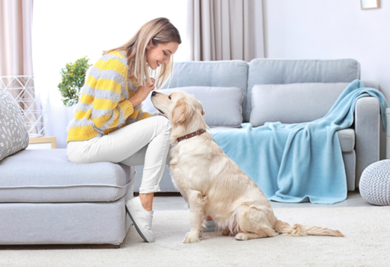 WOMAN SPENDING QUALITY TIME WITH DOG