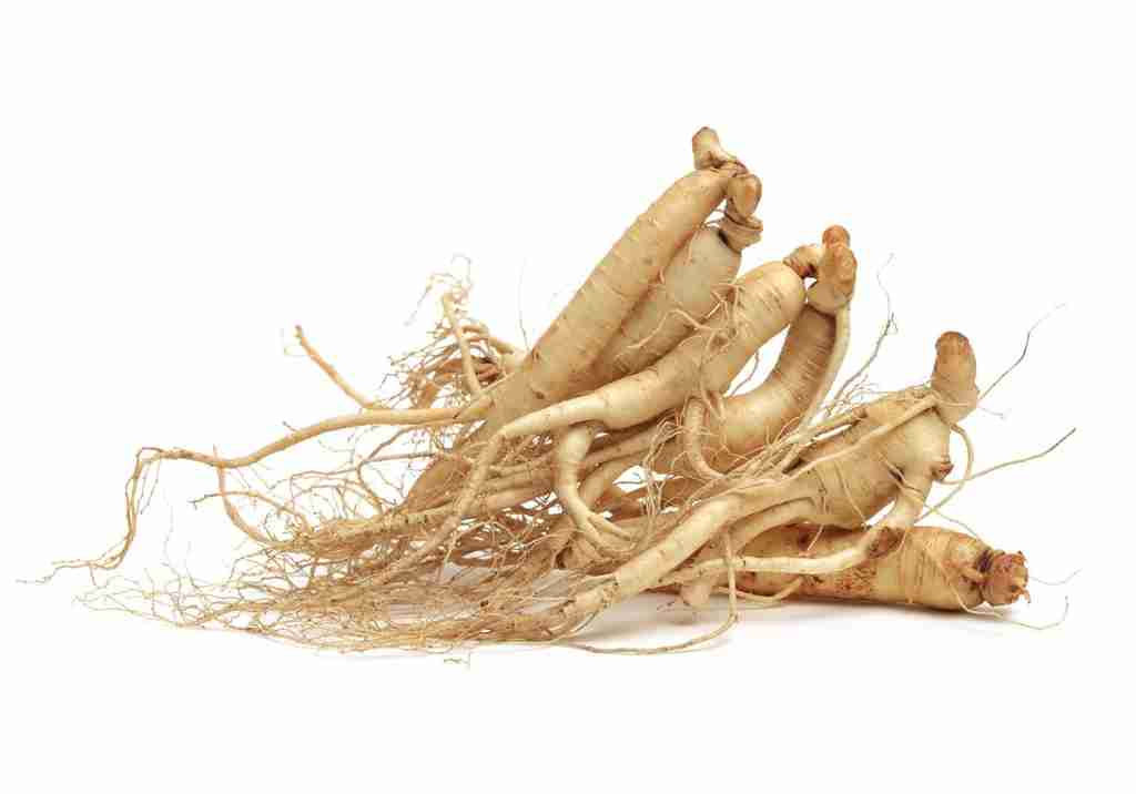asian ginseng testosterone booster