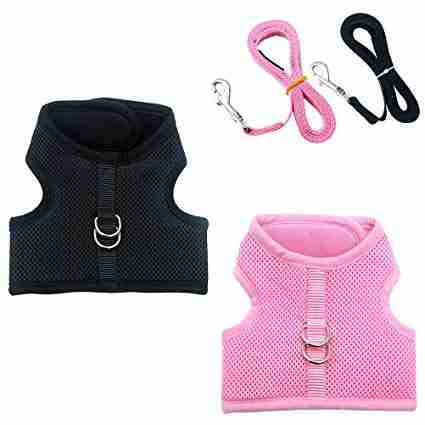 PUPTECK Escape Proof Cat Harness Set with Leashes
