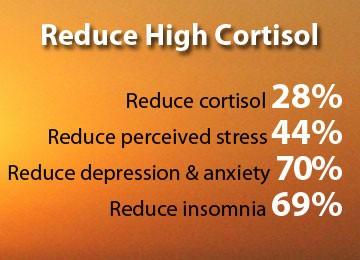 Golden Goddess Elixirs & KSM-66 Ashwagandha Reduce High Cortisol
