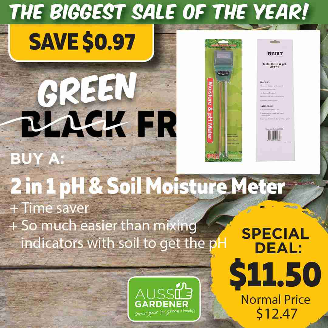 Green Friday Super Deal $138 value for just $95 - The biggest sale of the year.
