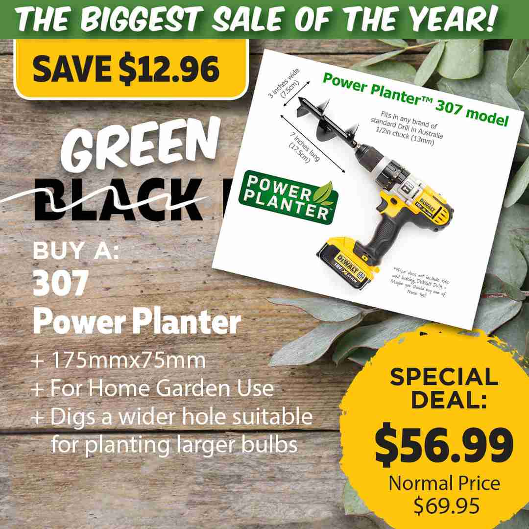 Green Friday Super Deal $69.95 value for just $56.99 - The biggest sale of the year.
