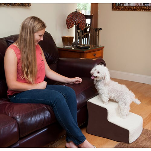 ramps and steps for dogs can help them get up on things without injury
