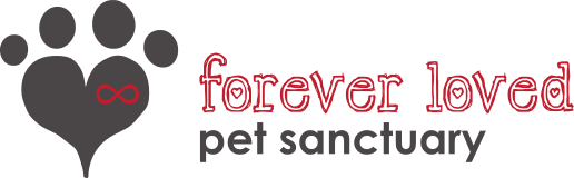 May 2019 Charity Spotlight: Forever Loved Pet Sanctuary