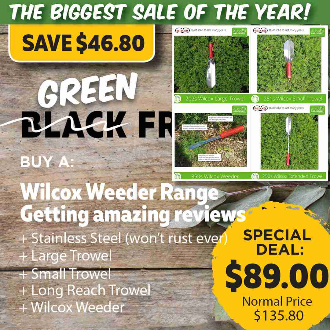 Green Friday Super Deal $135 value for just $89 - The biggest sale of the year.