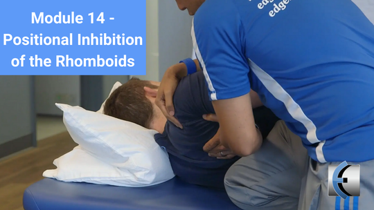 Module 14 - Positional Inhibition of the Rhomboids