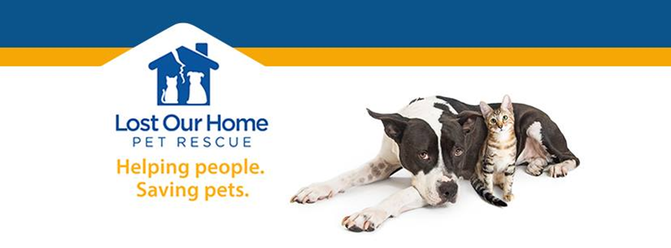 June 2019 Charity Spotlight: Lost Our Home Pet Rescue