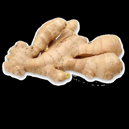 Ajara's Lemon Ginger Gel Based Moisturizer : Ingredients