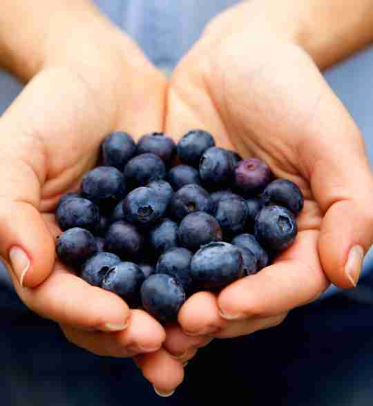 Post workout supplements quercetin dihydrate from blueberries.