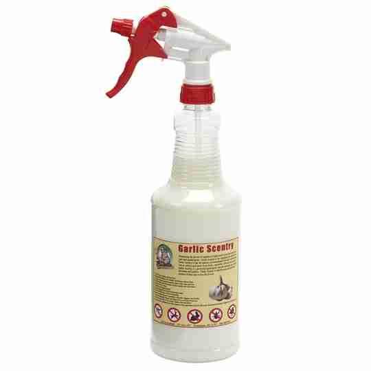 Garlic Spray Bottle