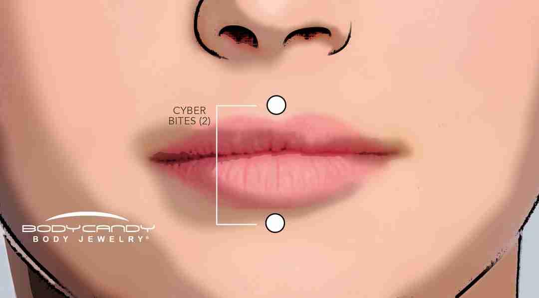 cyber bites