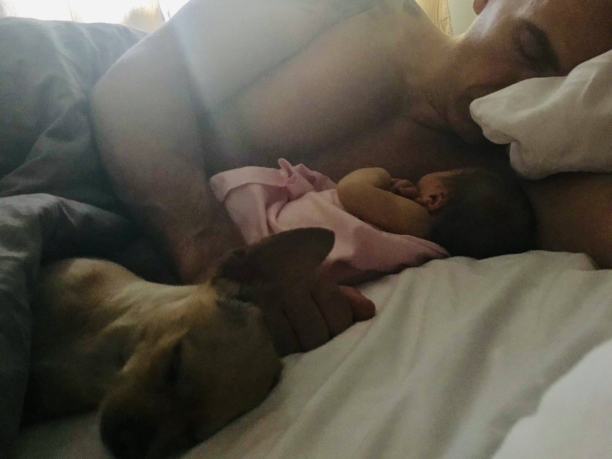 Dad with Baby Gemini and Dog Felipe