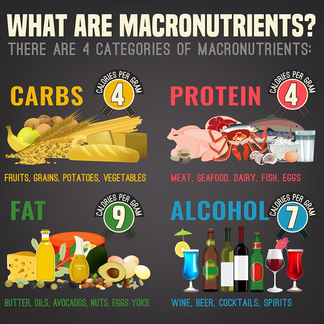 macronutrients complete wellness