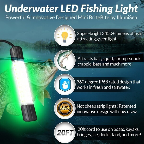 12v Mini britebite LED Fishing Light Features