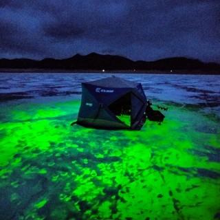 ice fishing green light