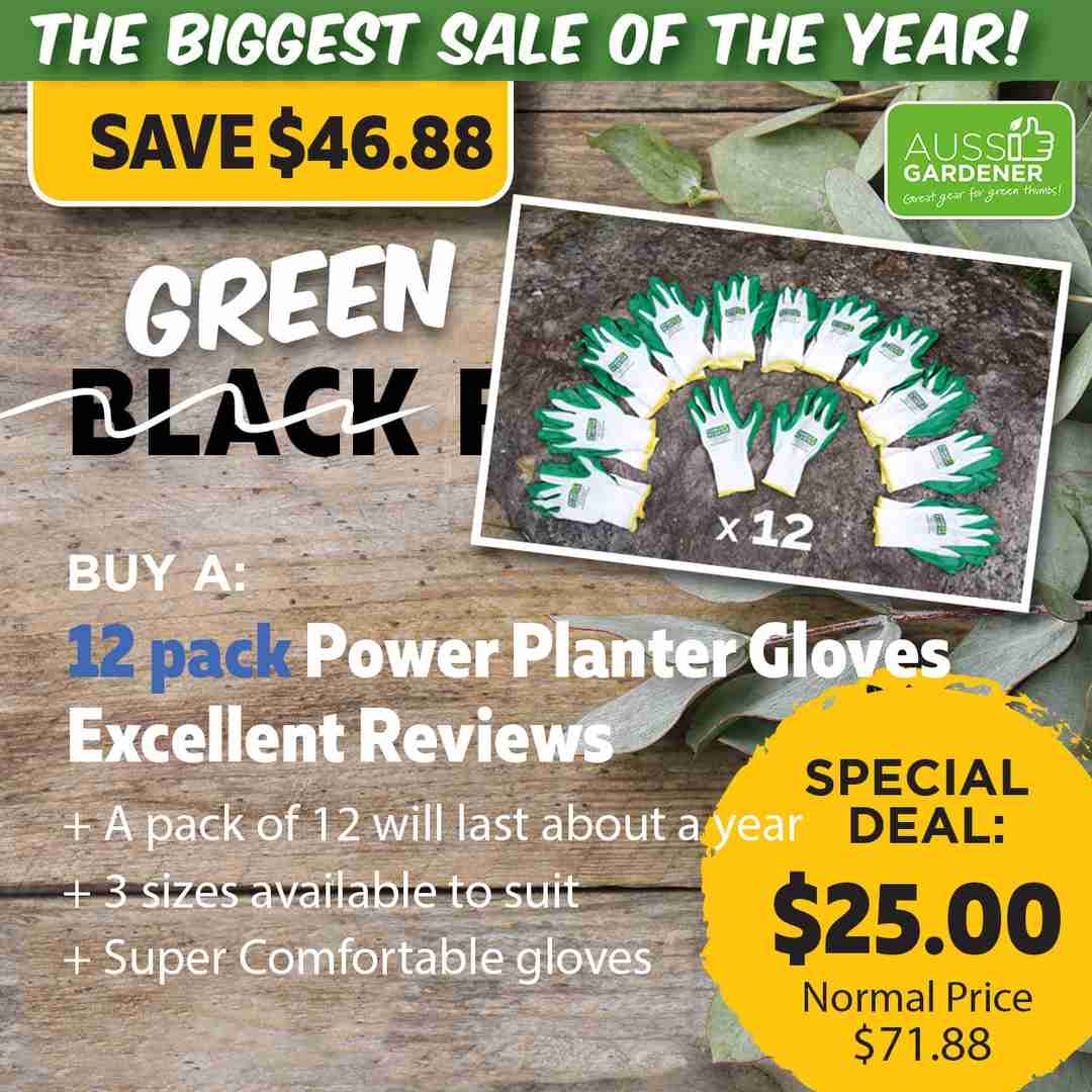 Green Friday Super Deal $71.88 value for just $25 - The biggest sale of the year.