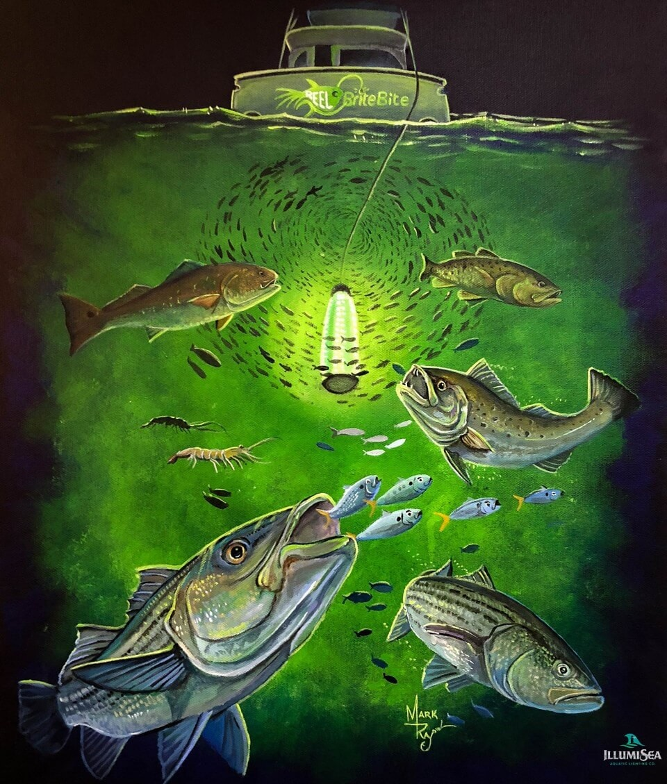 underwater green fishing light artwork