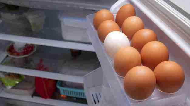 menyimpan telur