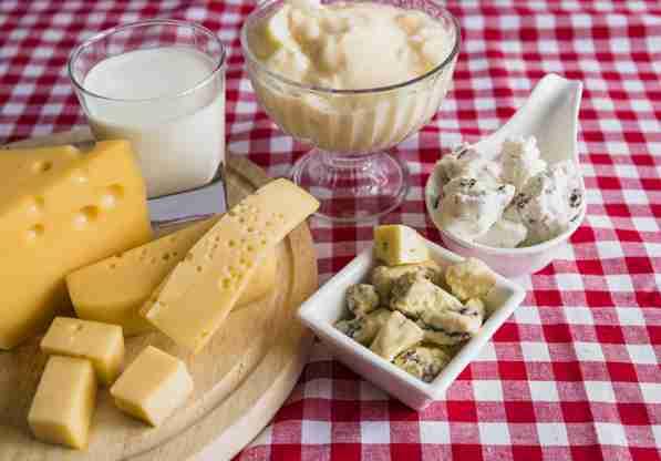 menyimpan dairy food