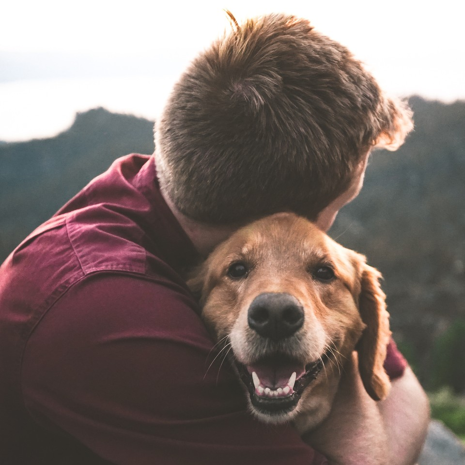 PETS CAN HELP YOU LEAD A HEALTHIER & MORE ENJOYFUL LIFE