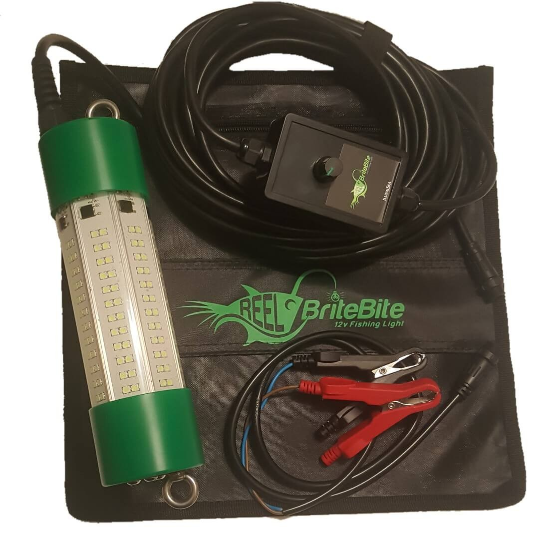 green fish light