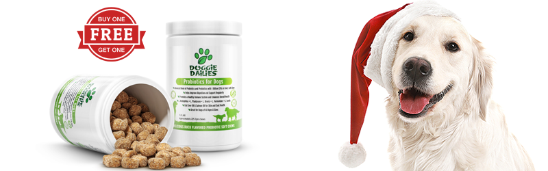 7 Days of Deals. Buy One Jar of Probiotic Chews & Get One Free. December 4th - Only While Supplies Last.
