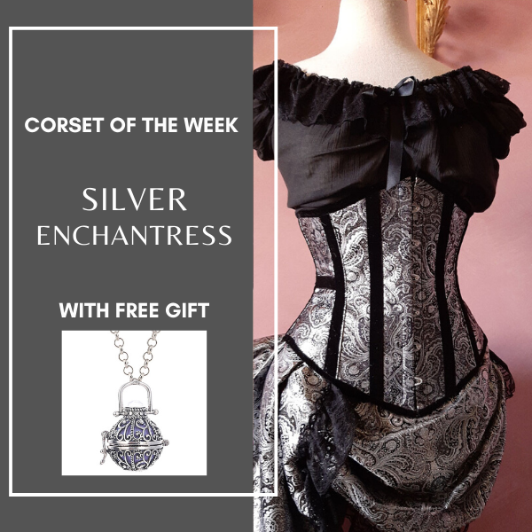 Dark silver paisley brocade under bust corset trimmed with black velvet shown with a necklace in a grey frame with Corset of the Week text