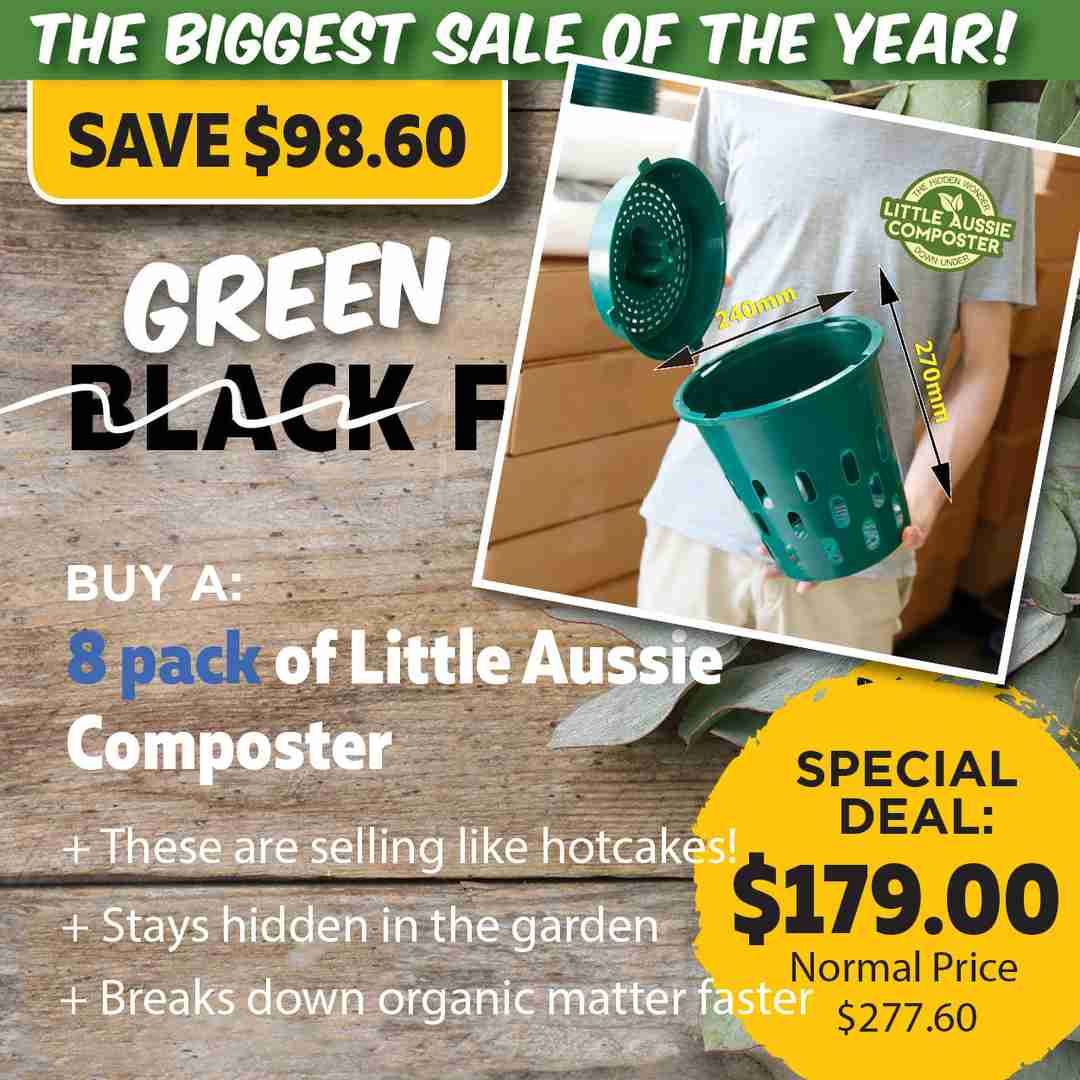 Green Friday Super Deal $277 value for just $179 - The biggest sale of the year.
