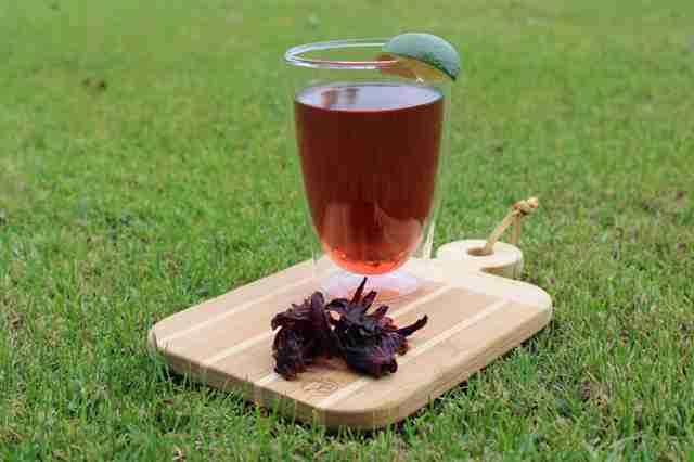 Hibiscus Tea health benefits