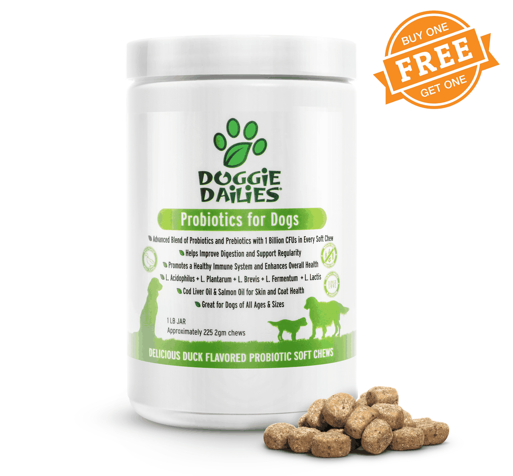 Advanced Probiotics Supplement for Dogs