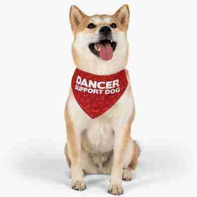 Dancer Support Dog Pet Bandana Collar