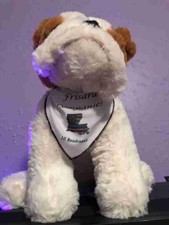 A bulldog wearing a bandanna.