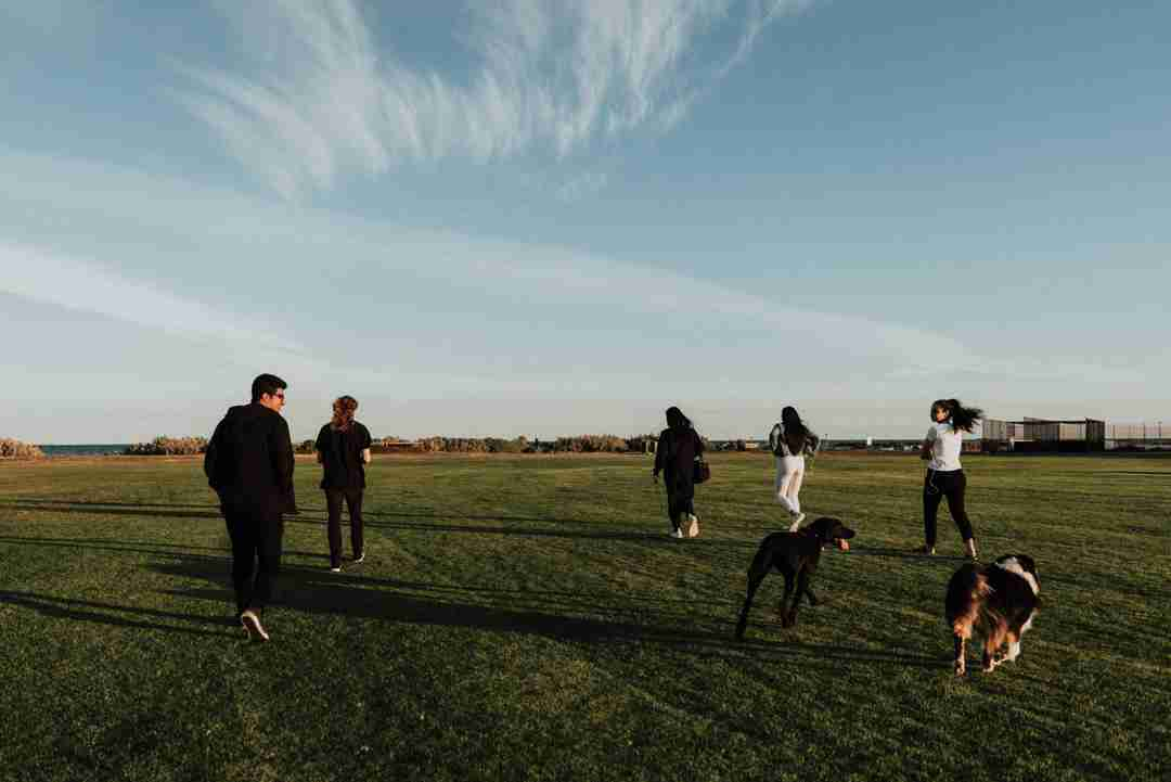 Group of friends playing in the field