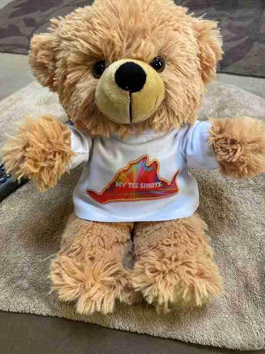 A sitting beige bear wearing a t-shirt